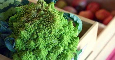 5 pasaulyje mažiausiai žinomos daržovės