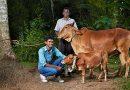 Pasaulio gyvūnų rekordų TOP 5