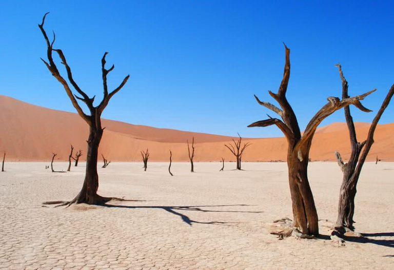 5 gražiausios dykumos pasaulyje